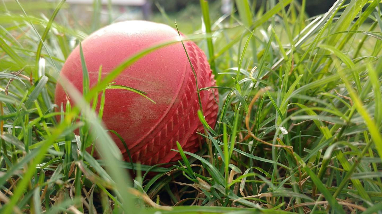 Cricket ball | © Auk002/Pixabay