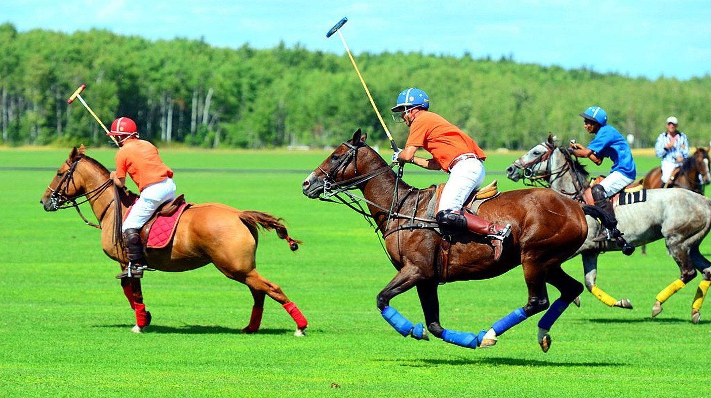 A polo match | © Vince pakhala/Wiki Commons