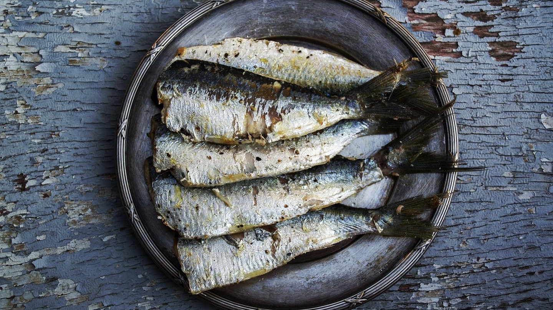Sardines | © greekfood-tamystika / Pixabay