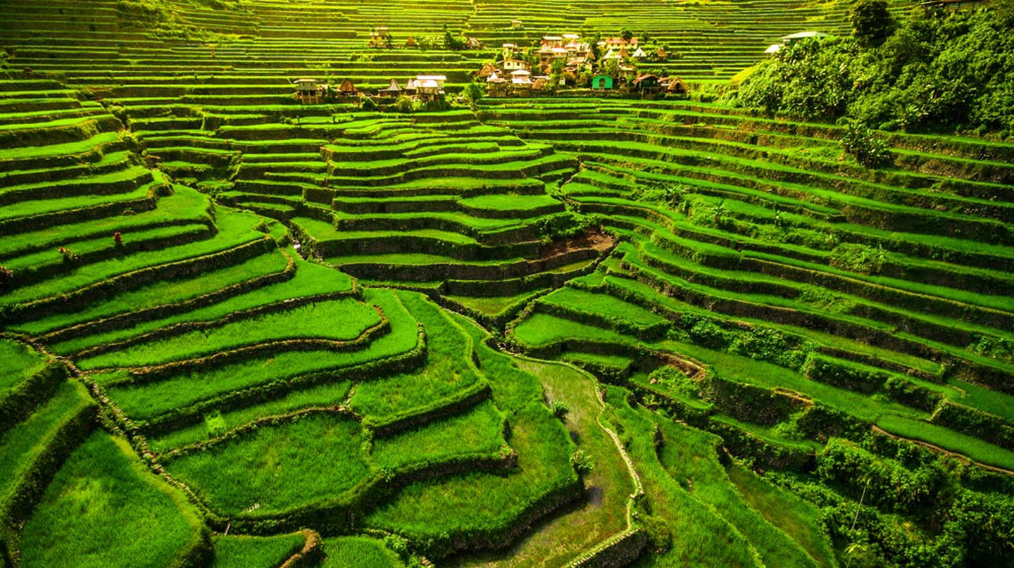 World heritage Ifugao Rice Terraces in Batad, Northern Luzon