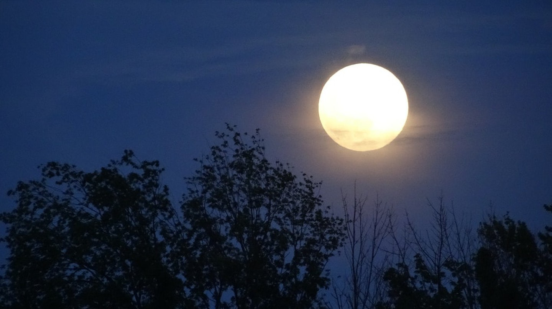 Full Moon | © Rachel Kramer/Flickr