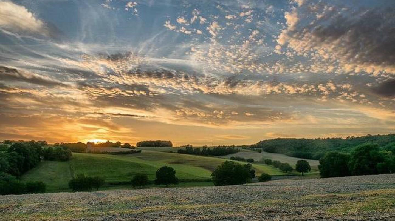 Breathtaking Bordeaux | © Matt Cooper