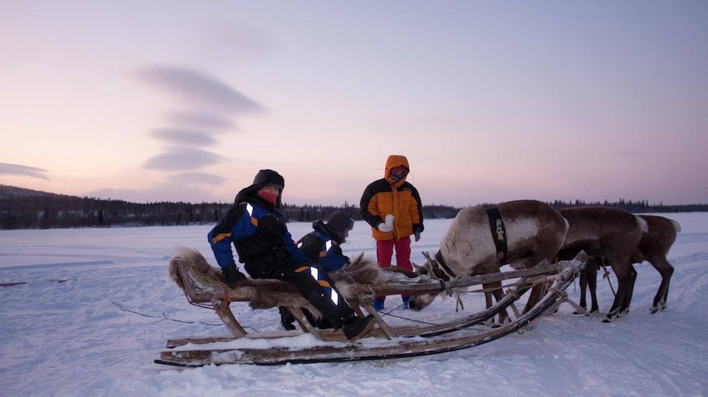 Arctic adventures | © Dmytro Ziniakov / Flickr