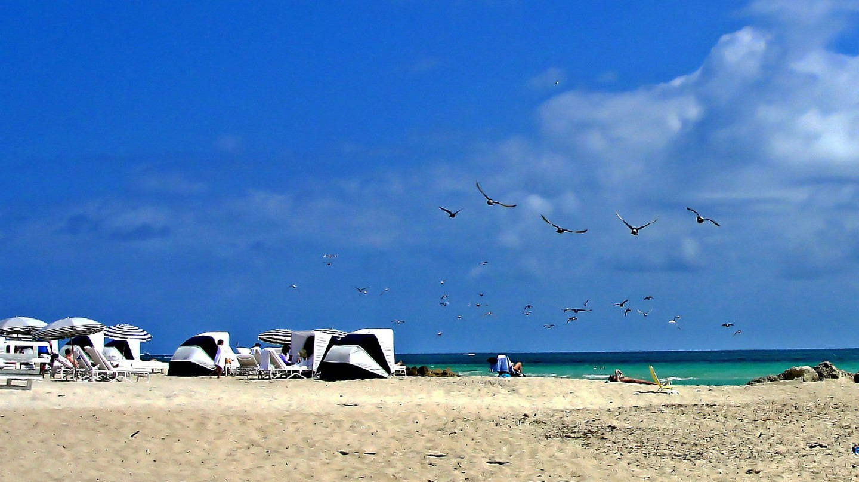 Miami | Public Domain \ Pixabay