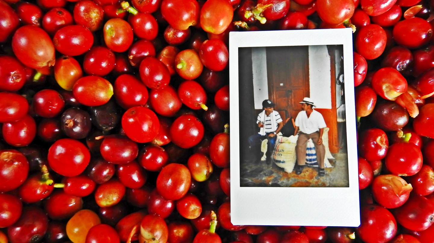 Colombia's coffee pioneers