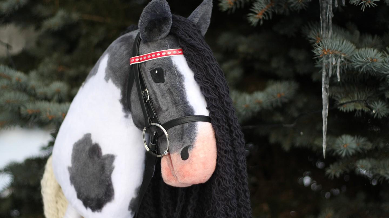 Handmade hobby-horse