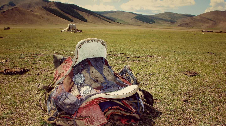 The Mongolian grassland | © Pixabay