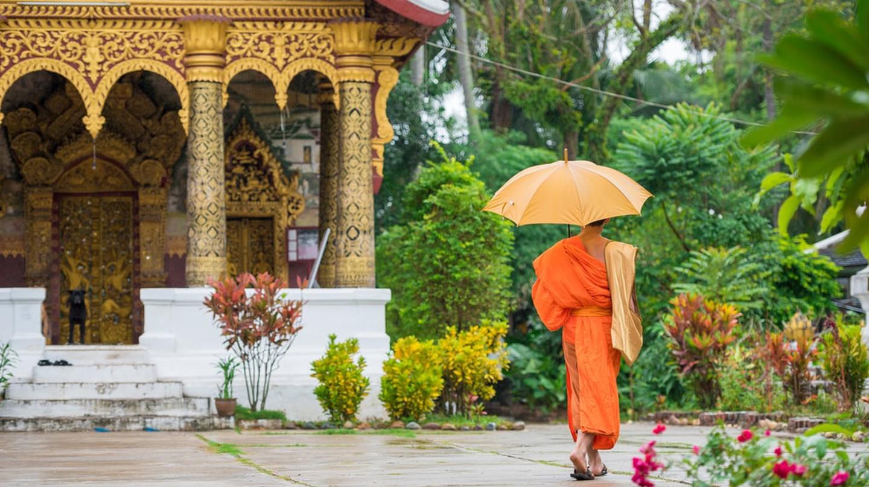 Monk, Luang Prabang