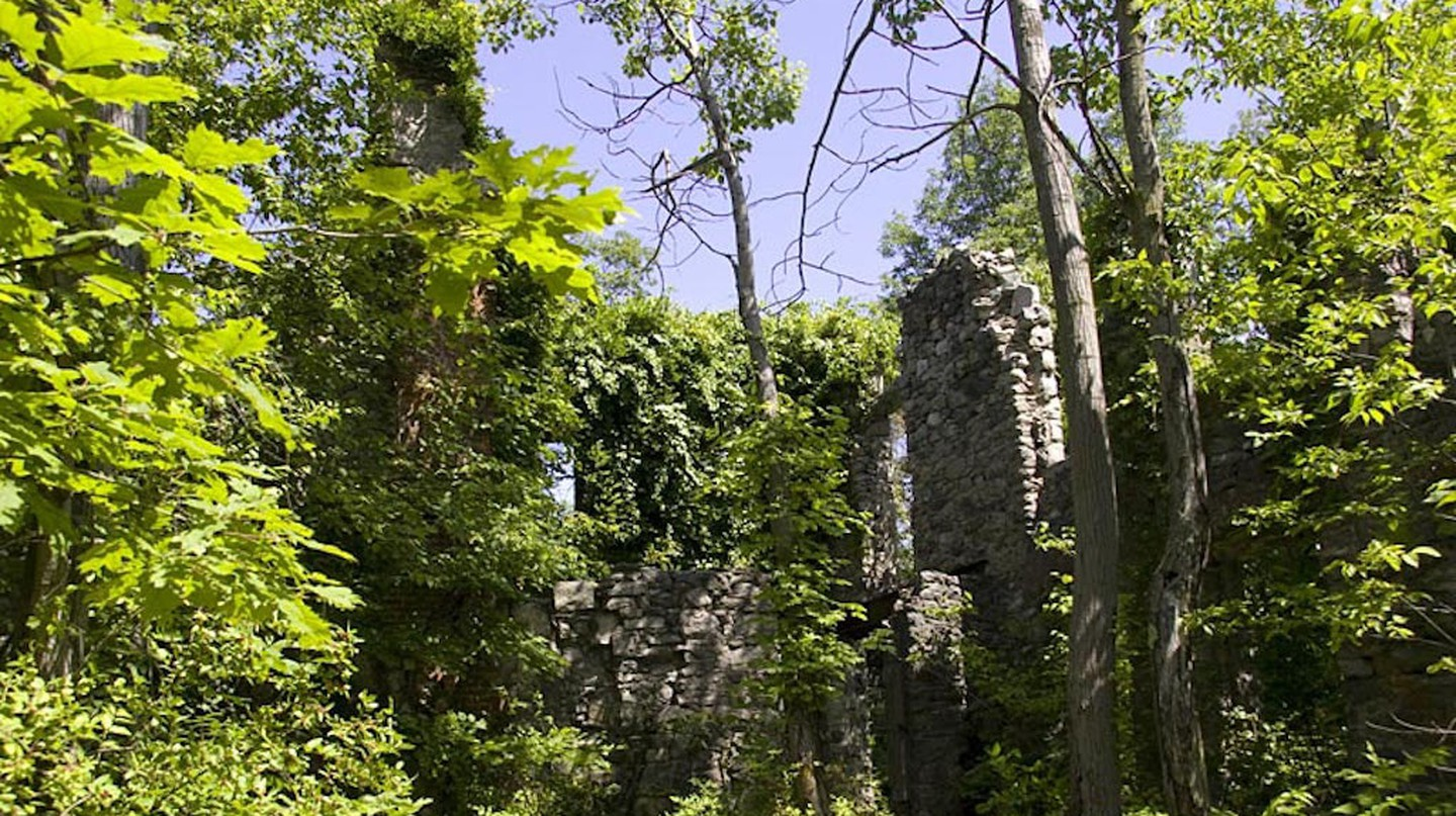 The ruins of the castle