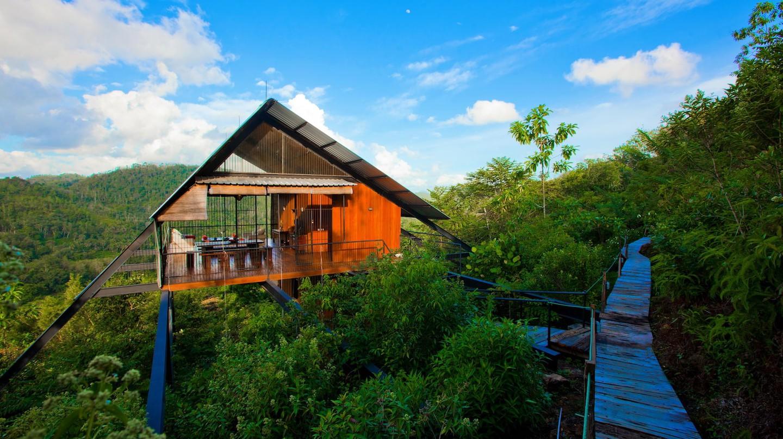 The Ark Treehouse