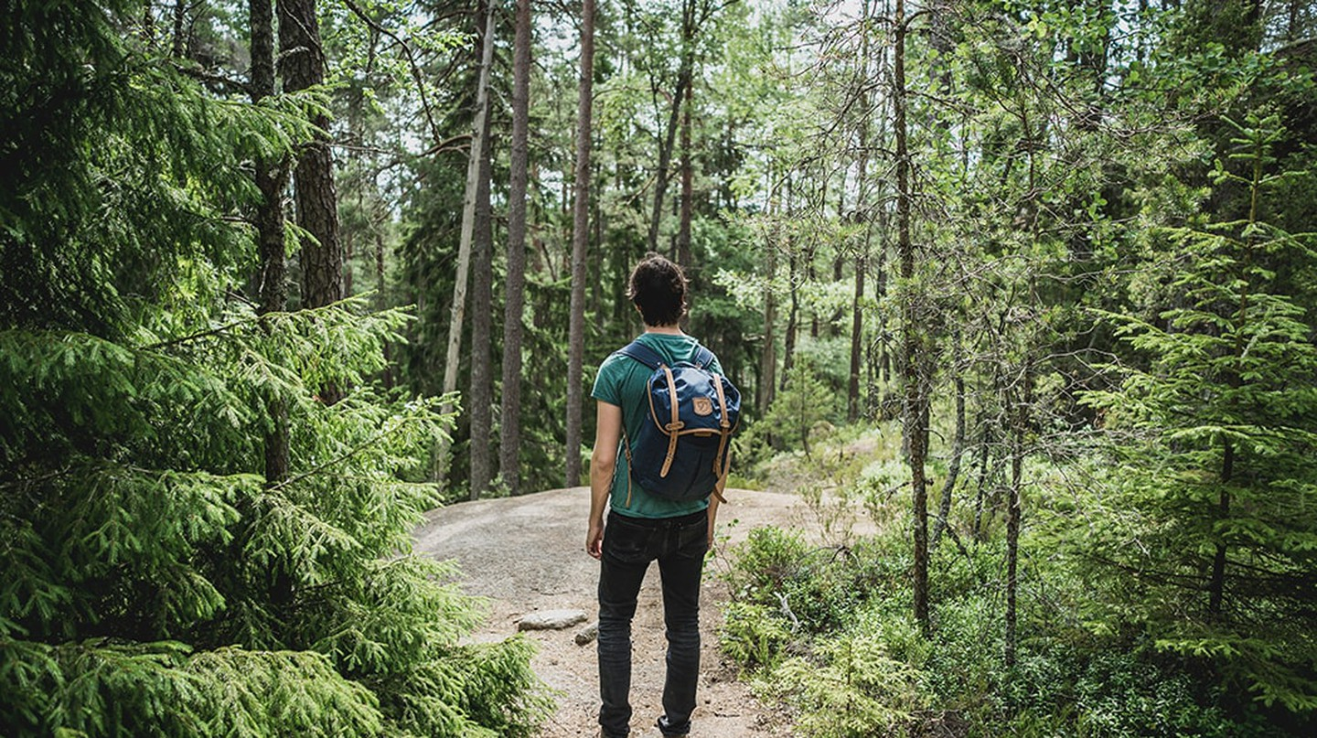 A solo hiker explores the woods