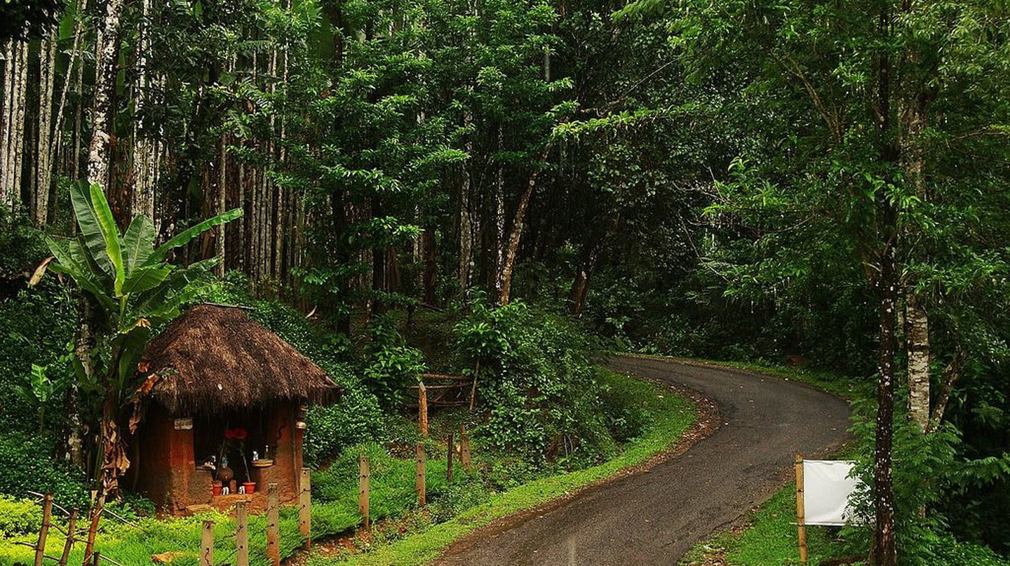 Agumbe is home to one of the few rainforests in India | © Shyam Siddarth / WikiCommons