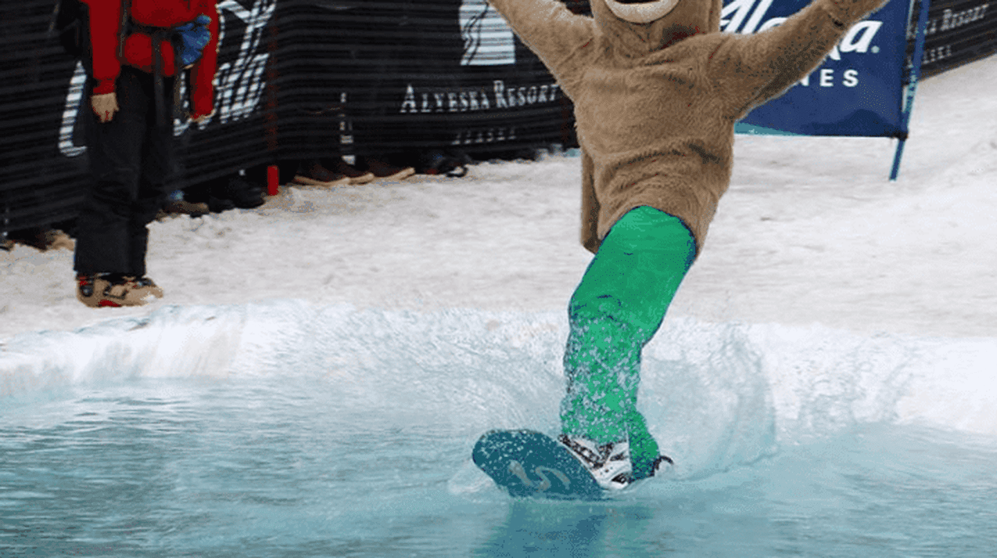 Slush Cup | © Bailey Berg
