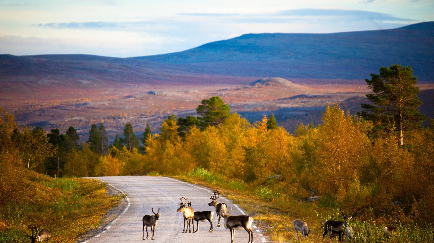 Best road trips in Finland: Lapland