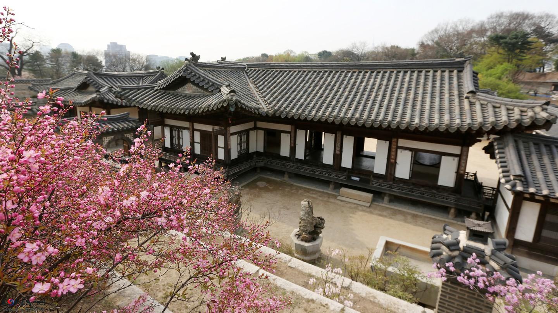 Changdeokgung in spring