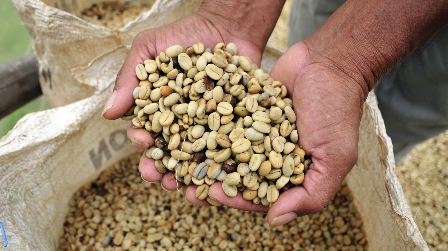 Colombian coffee | © CIAT / Flickr