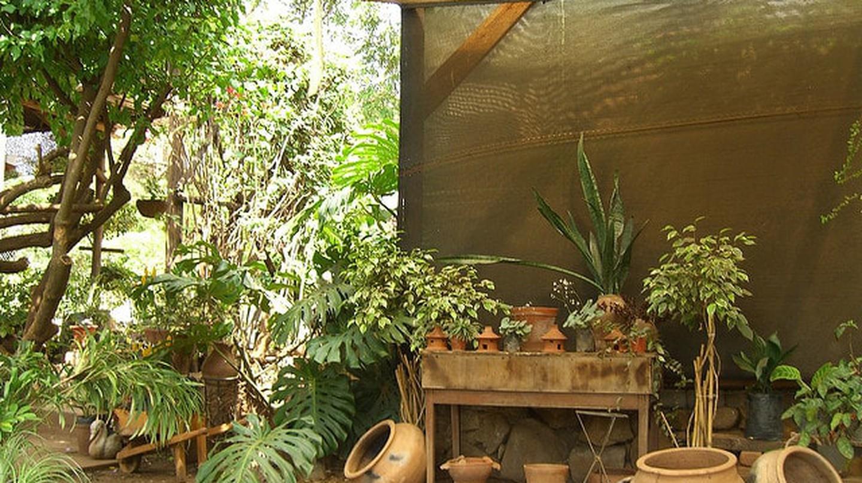 A shaded spot in Lilongwe, Malawi