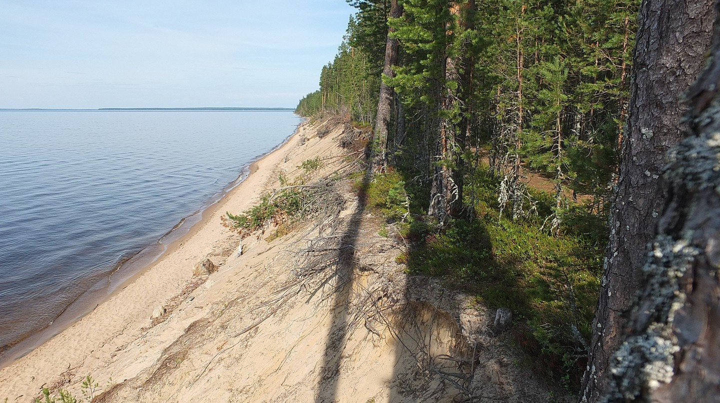 Shore of Manamansalo in Rokua, Finland.