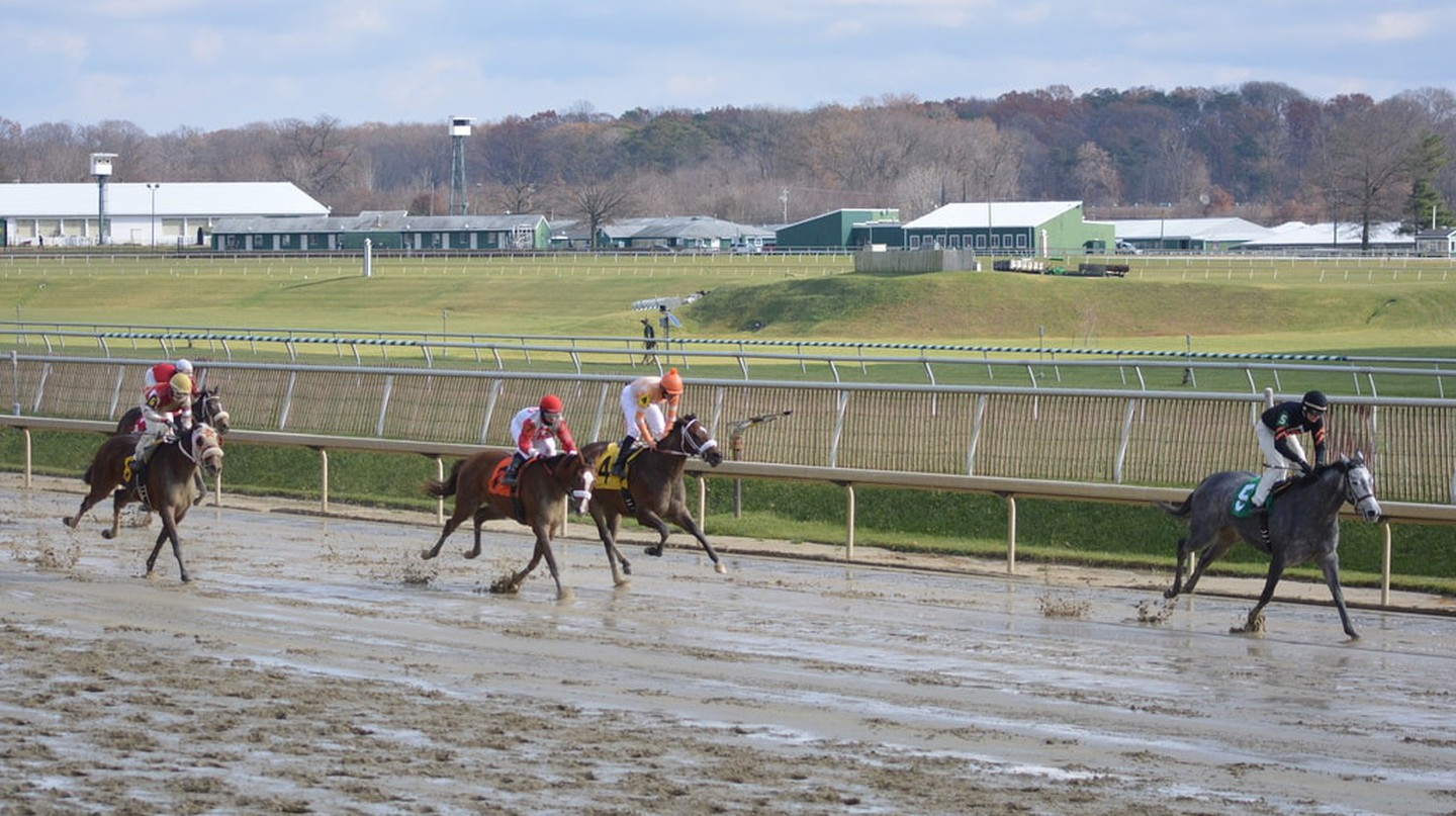 Horse Racing at Laurel Park