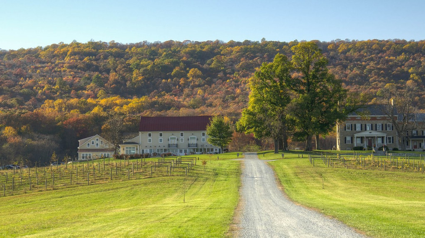 A Maryland winery