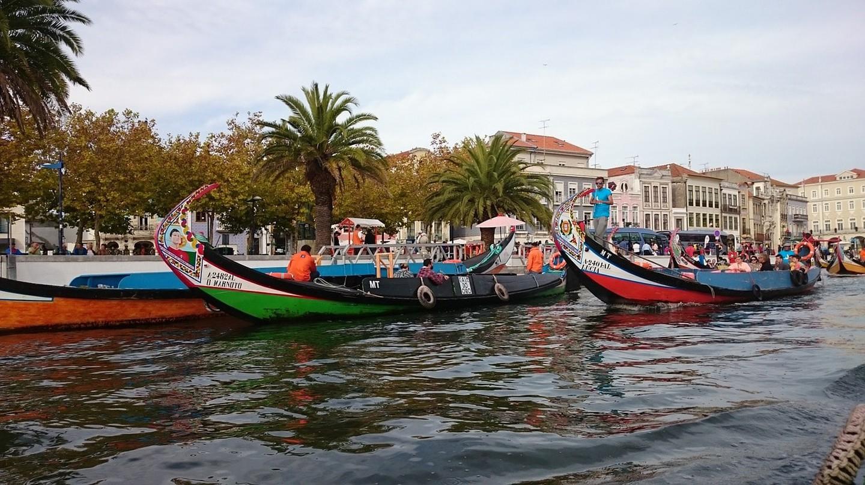 Moliceiros in Aveiro