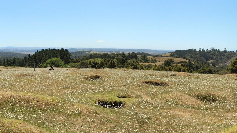 A Maori battleground