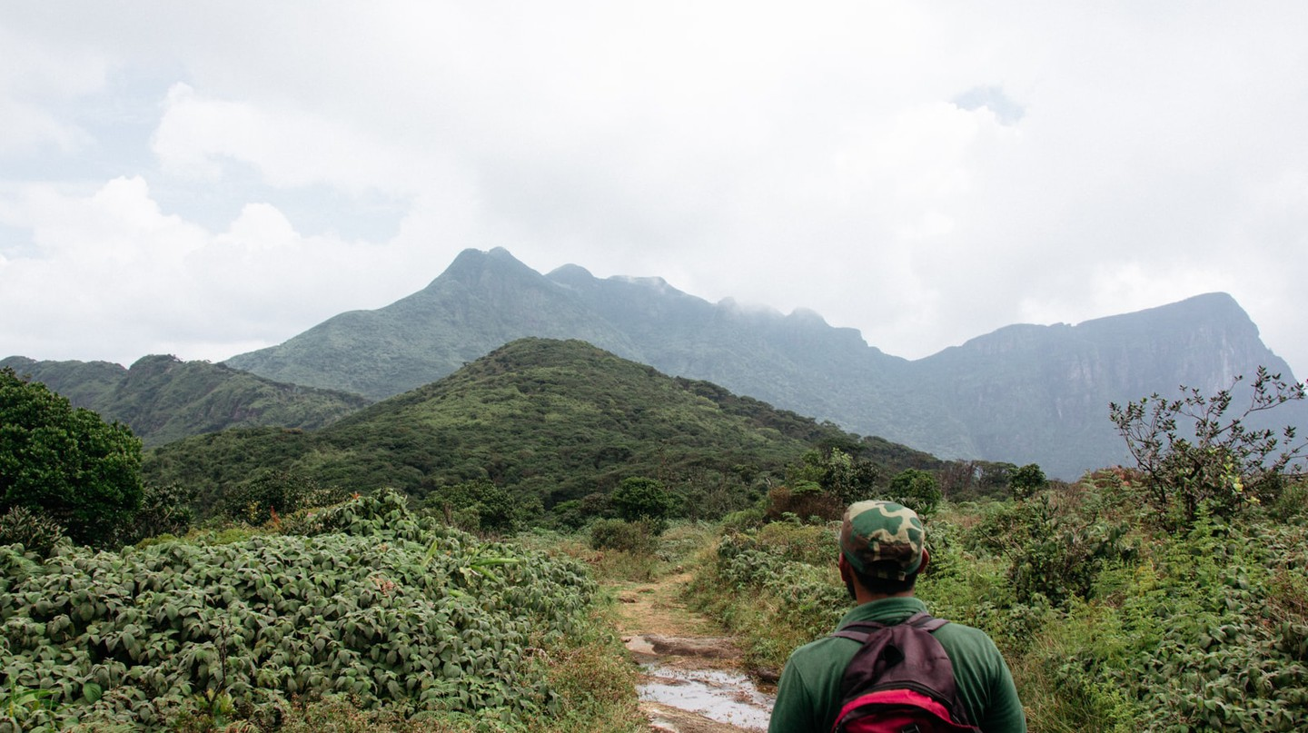A Hiker's Guide to Sri Lanka's Knuckles Mountain Range