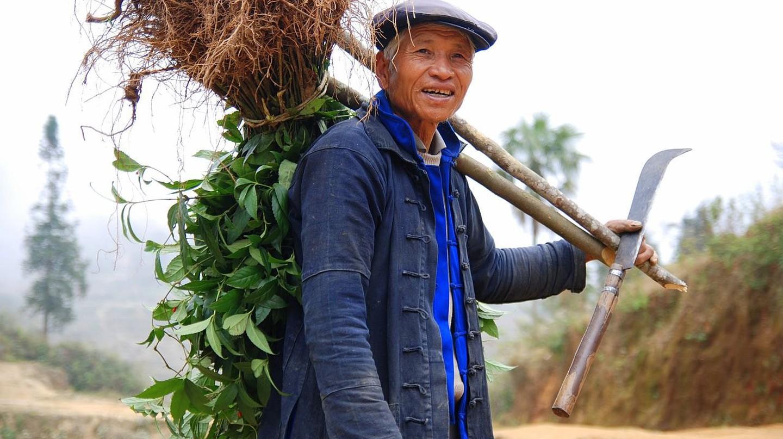 Hani Farmer