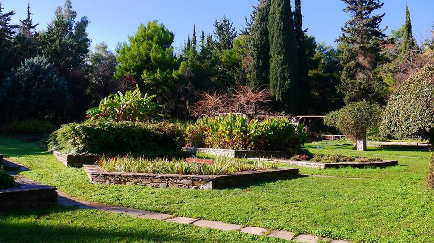 The Julia & Alexander N. Diomedes Botanical Garden in Haidari is one of Athens' best-kept secrets