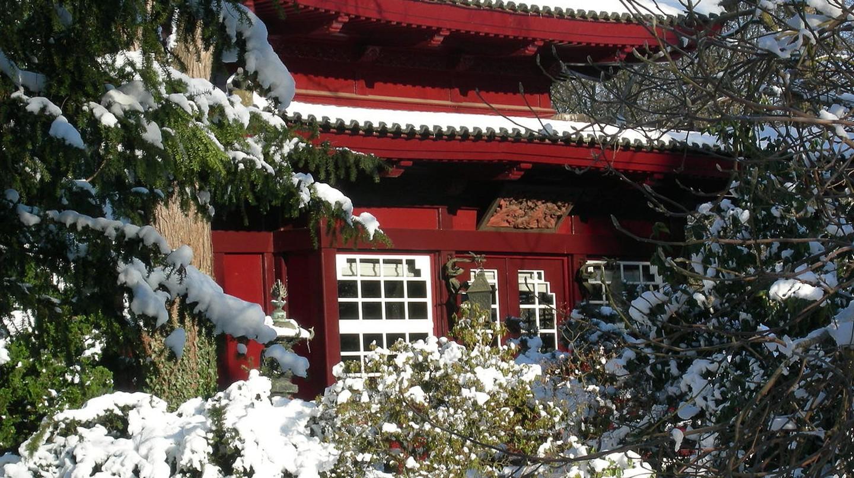 Japanese Gardens, Leverkusen