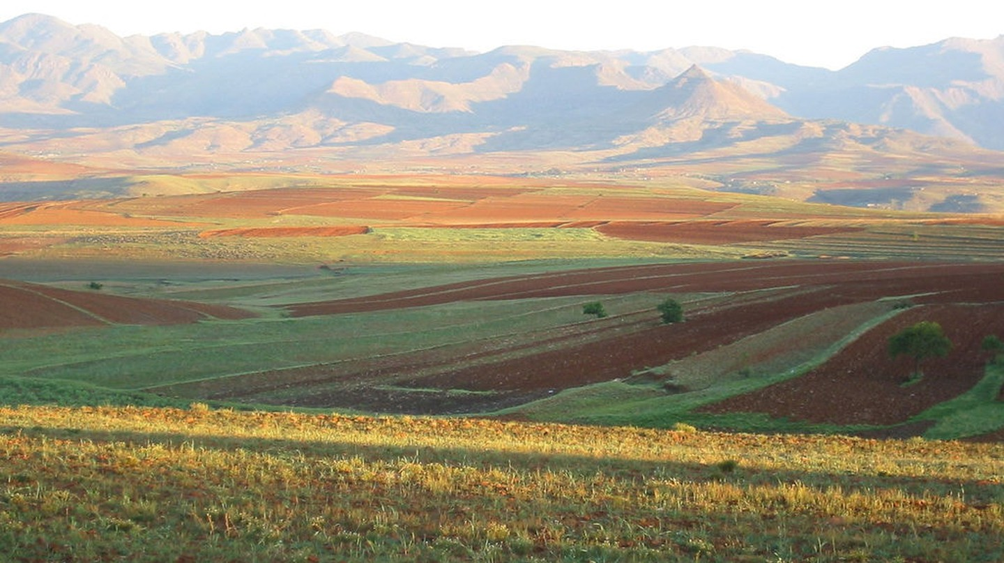 Agricultural fields in Lesotho
