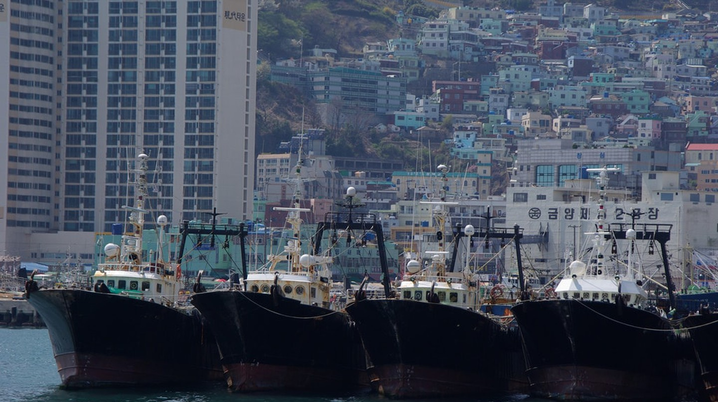 Fishing boats in Busan Harbour, South Korea