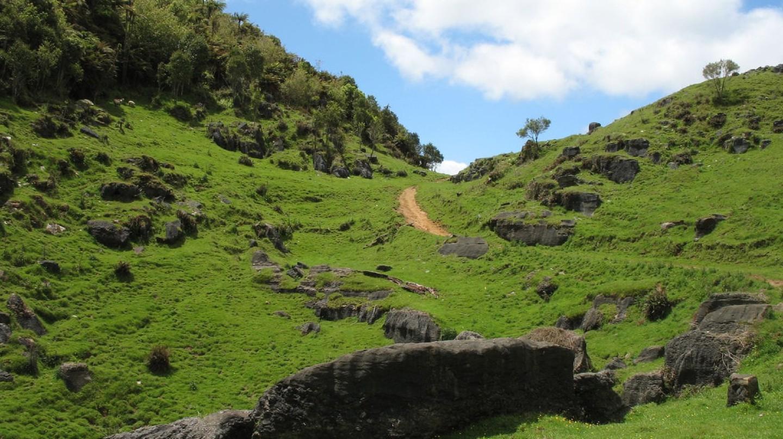 Waitomo, New Zealand landscape
