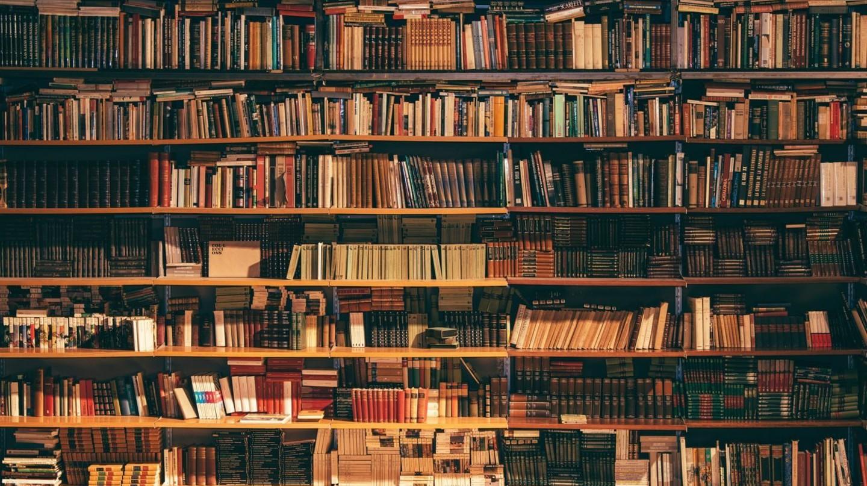 Book shelves | © Alfons Morales / Unsplash