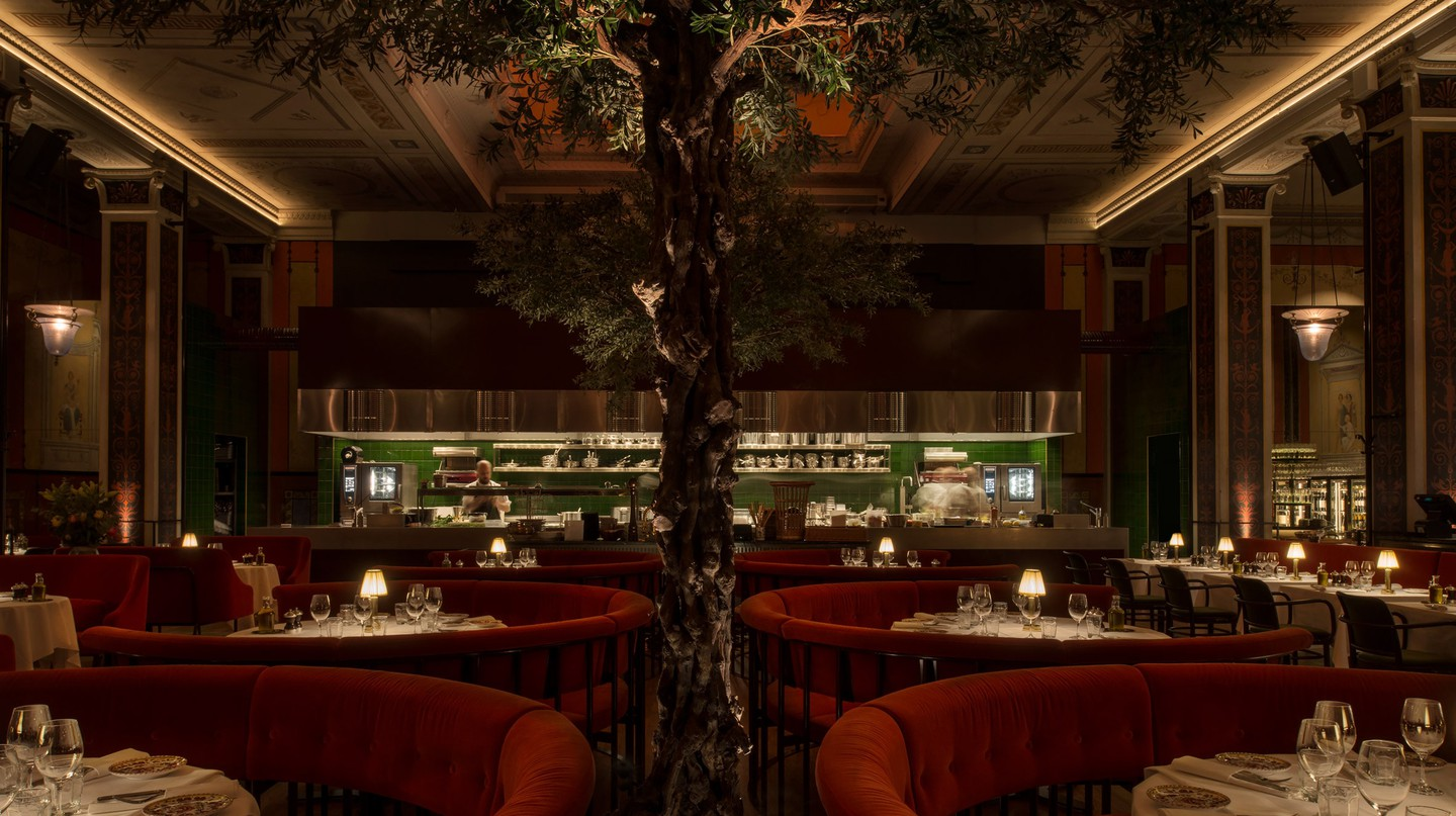 The olive tree stands majestically at the center of L'Avventura restaurant