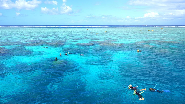 Snorkel in the Agincourt Reef in Far North Queensland, Australia – you won't regret it.