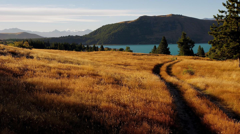 Tekapo landscapes