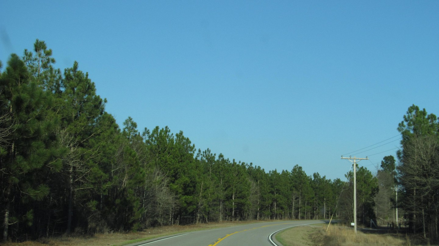 The roads in South Carolina can lead you anywhere from the mountains to the ocean