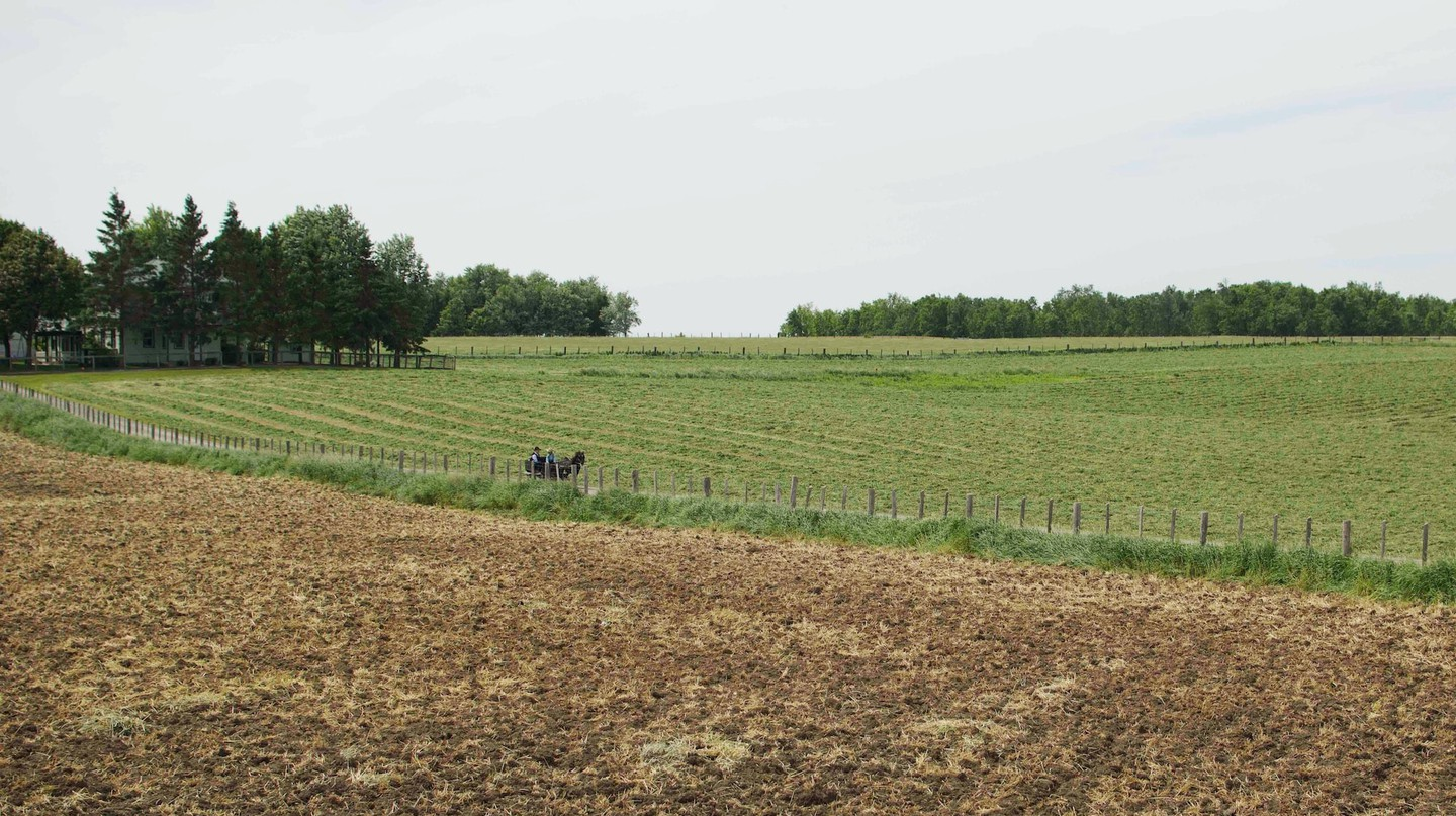 Farmlands of St. Jacobs Country