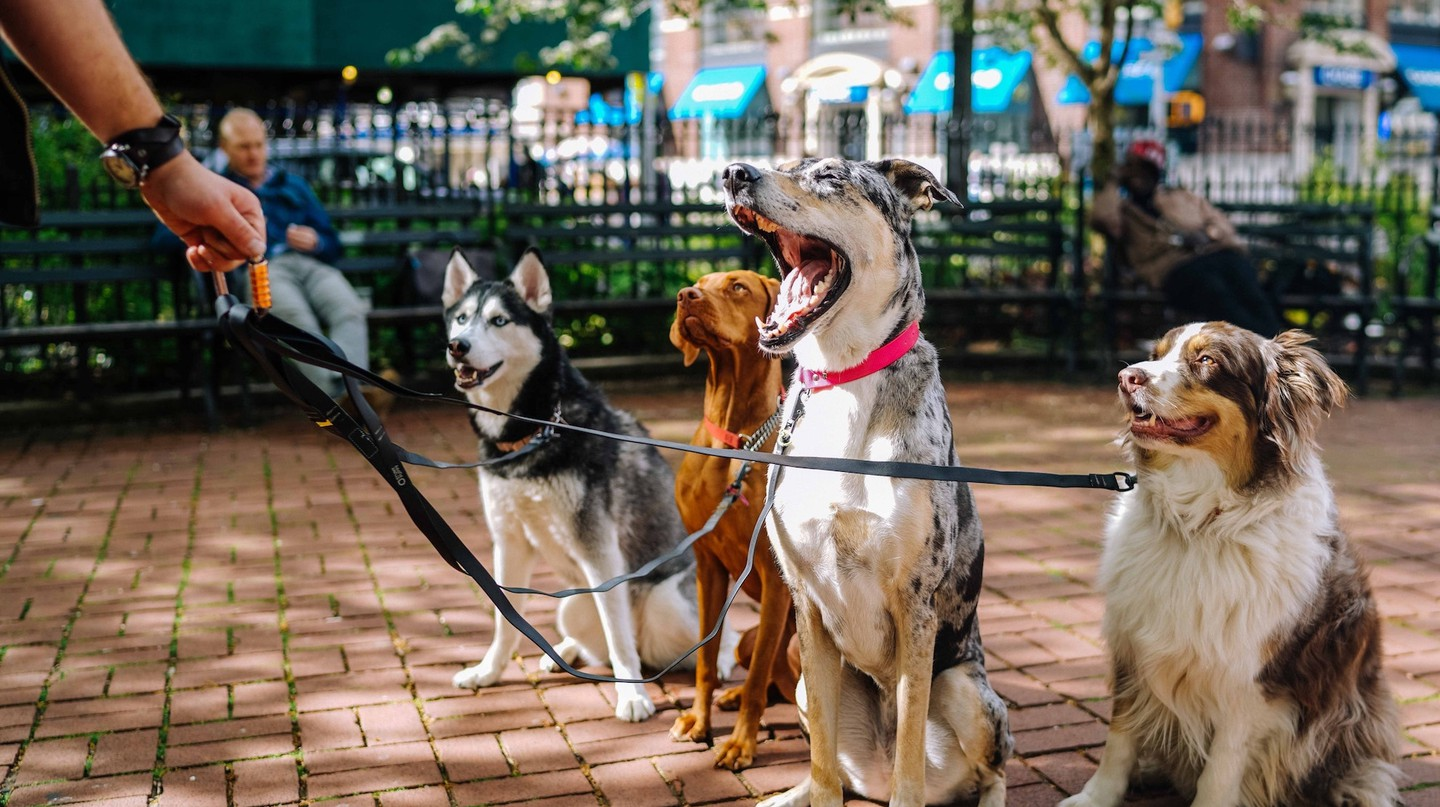 Unusual Bans from Iceland That You Didn't Know About