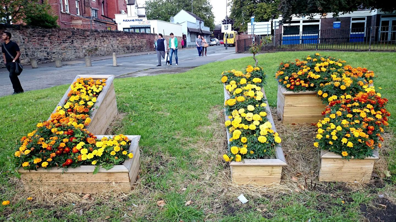 Lark Lane L17 flowerbeds
