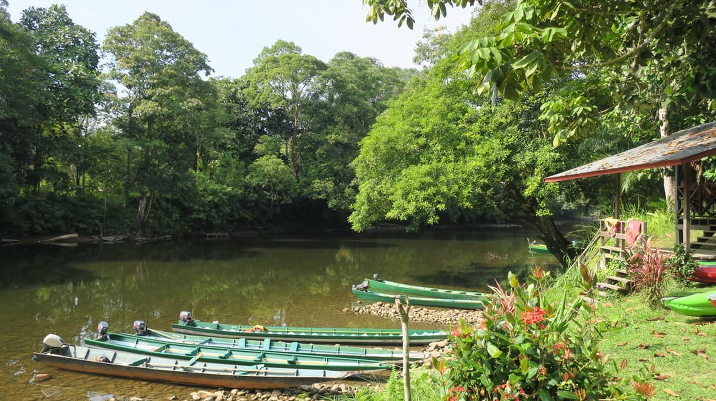 Longboats in Ulu Temburong