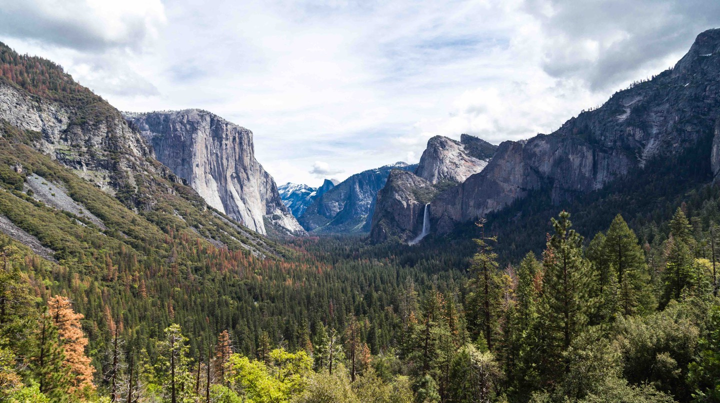 A campsite reservation bot for Yosemite National Park has been posted on GitHub, a code-sharing website