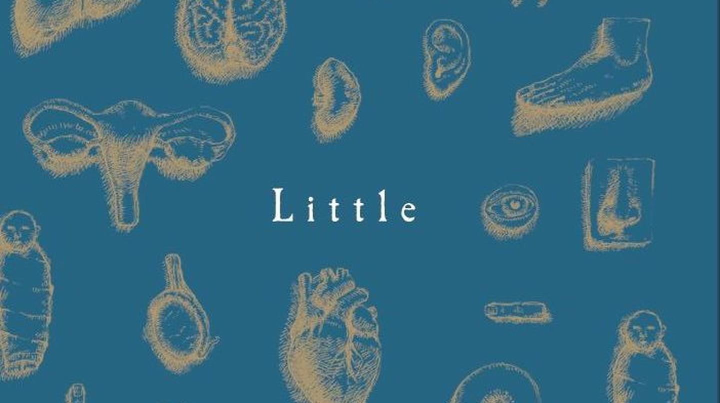 The 'Little' book cover