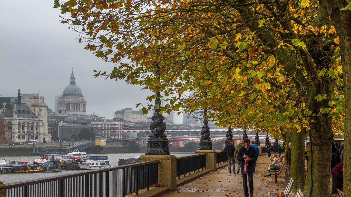 The River Thames during Autumn
