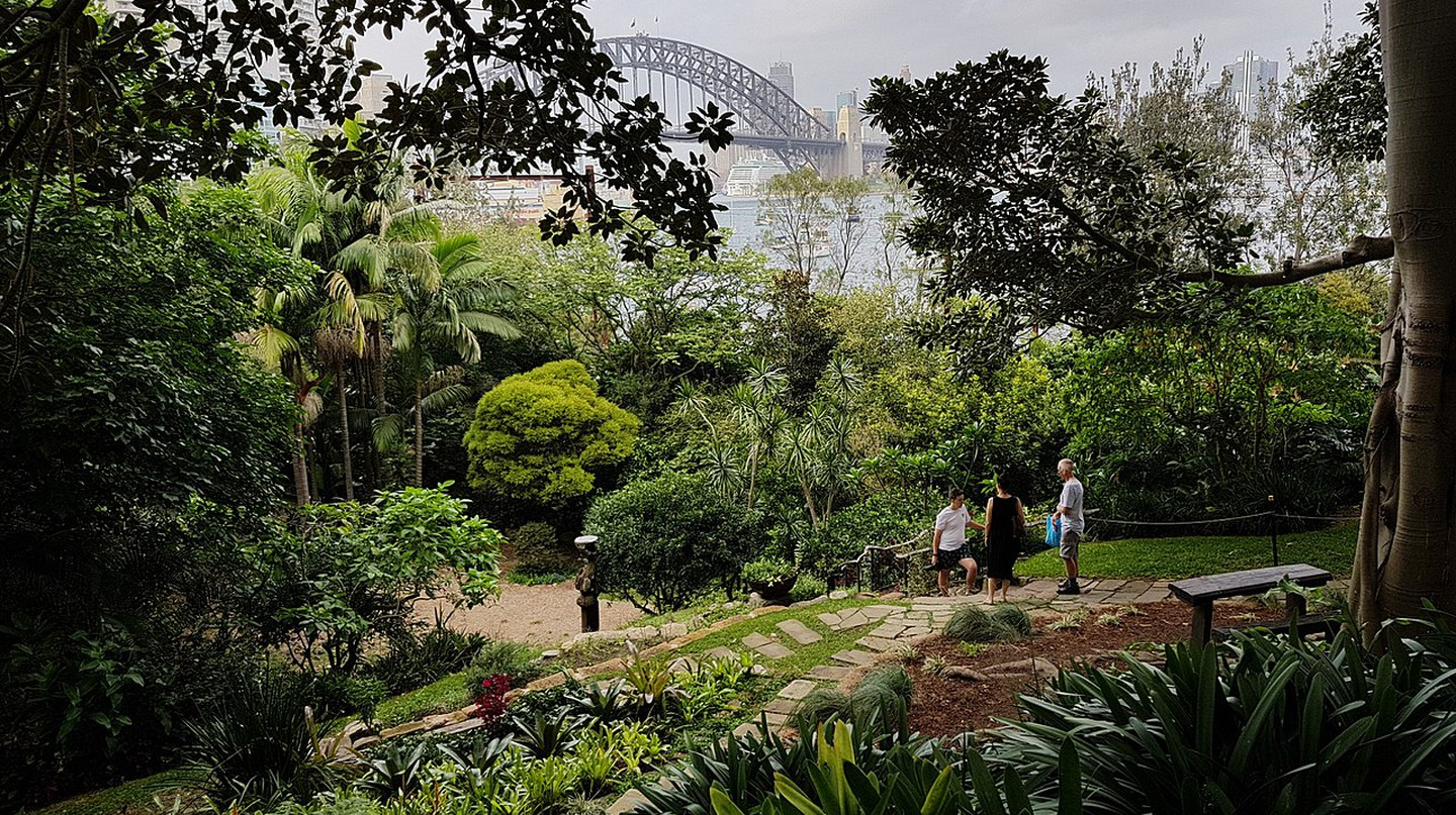 The view of Sydney Harbour from Wendy's Secret Garden