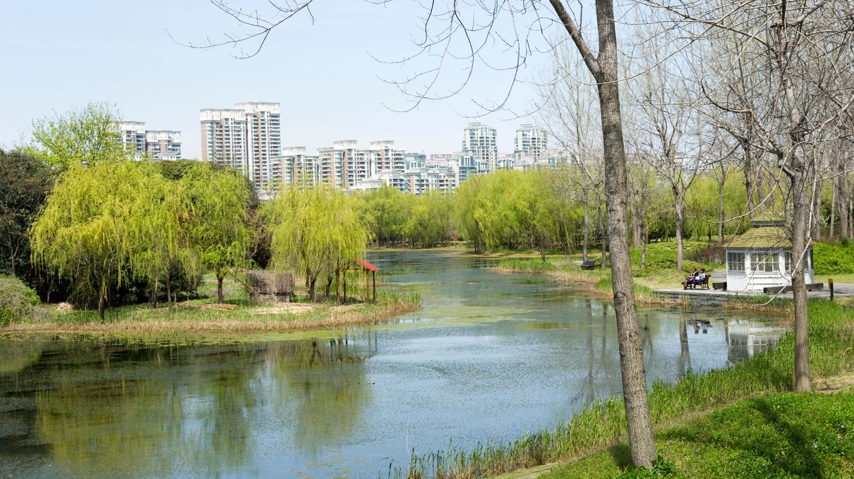 Century Park, Pudong, Shanghai, China