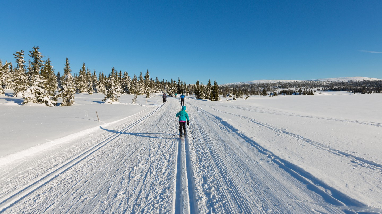 Winter at Sjusjoen in Norway