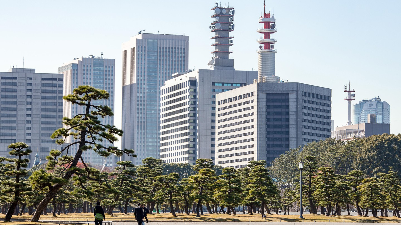 A park with pine trees on Uchibori Dori Road, Tokyo