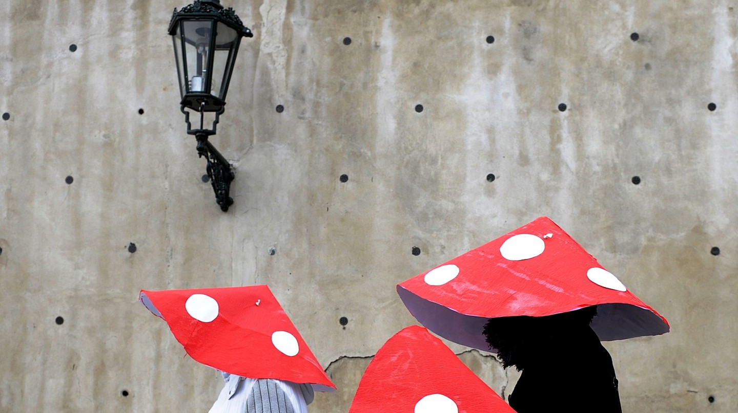 Carnival Goers Wearing Mushroom Costumes Attend the Malostranky Carnival Parade in Prague